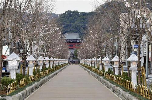 s dly1603240028 f1 - 鶴岡八幡宮は縁切り神社って本当!?近くの人気カフェはカップルでいっぱい!