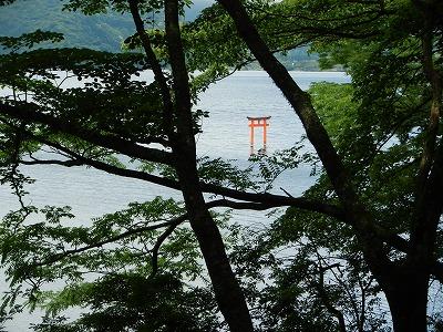 s DSCN5735 - 箱根神社と九頭龍神社の御朱印集めツアー!2つの神社は徒歩で周れるの?