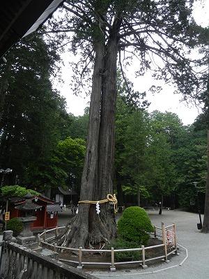 s DSCN6652 - 北口本宮冨士浅間神社で金運を上げる!日本最強の金運パワースポット巡り