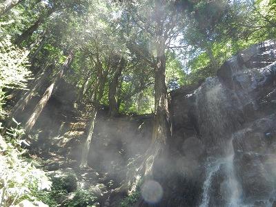 s DSCN6702 - 河口浅間神社を参拝するなら一緒に訪れたいパワースポット!母の白滝