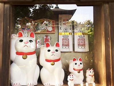s e71f6004272cdb3eac71388fd9ee7faf s - 豪徳寺は招き猫でいっぱい!購入するならどのサイズがおすすめ?