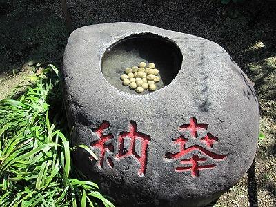s 669cf54bc54841a7aca012d8582b911c - 東京都内の縁切り寺で効果が期待できるのはお岩さんで有名な於岩稲荷陽運寺