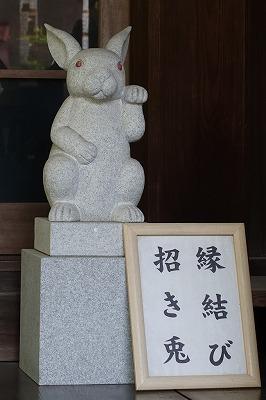s DSC03303 - 岡崎神社に行ったらうさぎみくじを引こう!うさぎだらけの縁結び神社♪