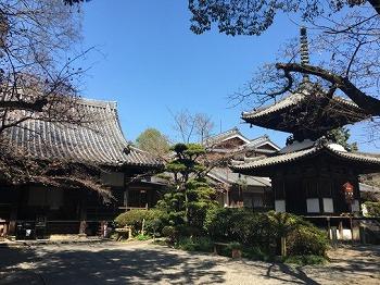 s 2019 01 05 10h09 08 - ぽっくり寺はツアーが出るほど大人気!一番人気は奈良の吉田寺!