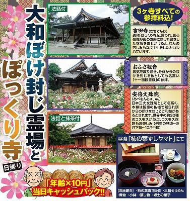 s 980 - ぽっくり寺はツアーが出るほど大人気!一番人気は奈良の吉田寺!