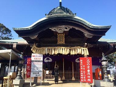 s image 5 5 - 神社で婚活!福岡のおすすめイベントは愛宕神社のお茶コン!